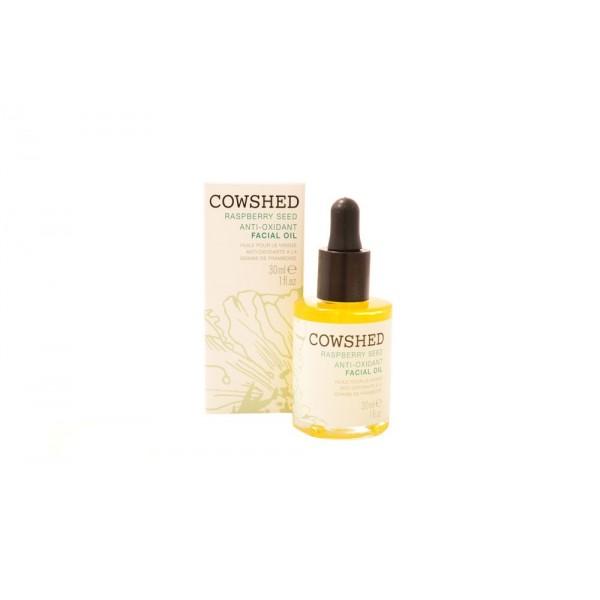 Rasberry Seed Anti-Oxident Facial Oil 30ml